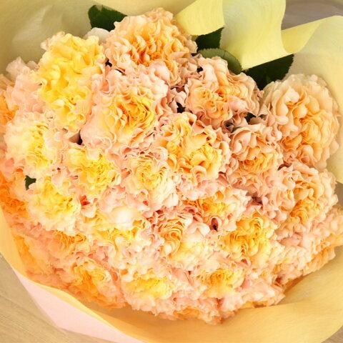 クリスマスにサプライズ 大輪のバラ花束 ラ・カンパネラ30本 送料無料 カーネーションのような不思議な花弁が魅力・父の日にも!