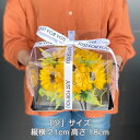 ブルーローズ お好きな本数をどうぞ(10本以上)青いバラ オランダ産高級! お誕生日や結婚記念日、開店祝い、退職祝い、卒業祝いなどお祝い事のギフトに。父の日/