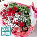 還暦祝い 国産品赤バラ60本花束とかすみ草5本 送料無料 05P03Dec16