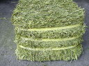 [heat drying  high mineral timothy (grass) 14 kg only in 24 in the product  world from Canada]