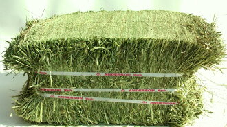 Superpremiumi-mothy grass cutting 1-24 kg