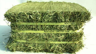 In world ◆ ◇ drying only ◇ ◆ Canada produced ハイミネラルチモシー (grass) 28 kg