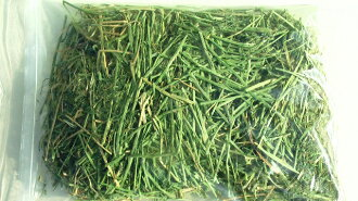 ★ high quality ★ クリスマスバーレー from alfalfa (pasture ) 1 kg (bag 500 g × 2 )
