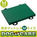 【送料無料】ドッグケア 防水マットレス Mサイズ 床ずれ予防 介護 清潔 国産 超小型犬〜小型犬対応