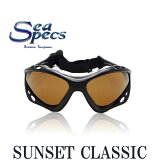 SEA SPECS SUNSET CLASSIC / �������ڥå� �������������ݡ����� ���󥰥饹 BLACK BROWN �֥�å� �֥饦�� �� �� ��� �� �� ��� ��ǥ����� UV���å� �и����