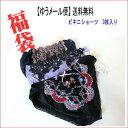 福袋♪【メール便送料無料】ビキニショーツ 3枚セット