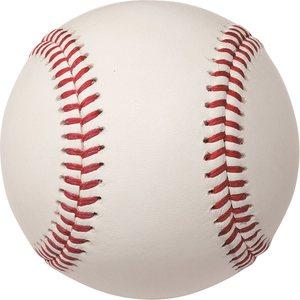 ザナックスの安心硬球xanaxbbf-356実績あり(コモンセ)牛皮革硬式野球ボール1ダース楽天ラン