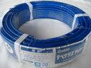 グラスファイバー工研 デベグラスワイヤー5φ30m(青)