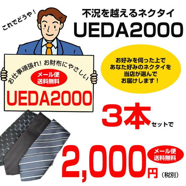 【ネクタイ セット】メール便なら【送料無料】お仕事頑張れ!お財布にやさしい 【UEDA2000】【新生活応援】 ギフト プレゼント
