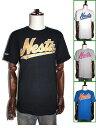 nesura brand ネスタTシャツ NESTA BRAND ネスタブランドTシャツ ネスタプリントT ネスタライオン NESTAライオンプリント 半袖Tシャツ