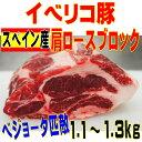 イベリコ豚ベジョータ匹敵  肩ロース 1.1〜1.3kgブロック バーベキュー・焼肉最適05P03Sep16