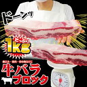 牛バラブロック1kg入 冷凍 アメリカ産またはオーストラリア産 【牛肉】【焼肉】【BBQ】【バーベキュー】10P03Dec16