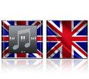 【お取寄せ】DecalSkin スキンシール Apple iPod nano 第6世代 Z28 Flag