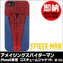 Spider_man_cj_case