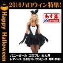 Bunny_costume_hw