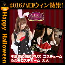 Rabbit_costume_hw2