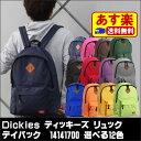 Dickies_14141700