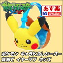 Pokemon_earmuffs