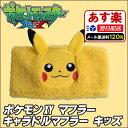 Pokemon_xy_muffler