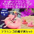 【クーポンで300円OFF】フラミンゴの親子丼セット フラミンゴフロート【送料無料】フラミンゴ 浮き輪 ビッグサイズ 浮き輪 ボヘミアン 白鳥 浮き輪 ビーチ プール かわいい 浮き輪 大人 フラミンゴ ドリンクホルダー10P18Jun16
