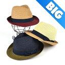 ハット メンズ 帽子 BIGSIZE バイカラー ペーパー 中折 ヤング帽子 男性用 コーデ