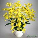 お祝い 造花 フラワーギフト 光触媒オンシジューム 6本立 イエロー