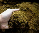 クワガタムシ・カブトムシ用 くち木マット 約5L袋 (16袋まで同梱包可能)