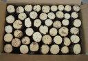 産卵材 細物 セットBOX(直径約3〜8センチ)クヌギ・ナラ材混合60〜100本セット