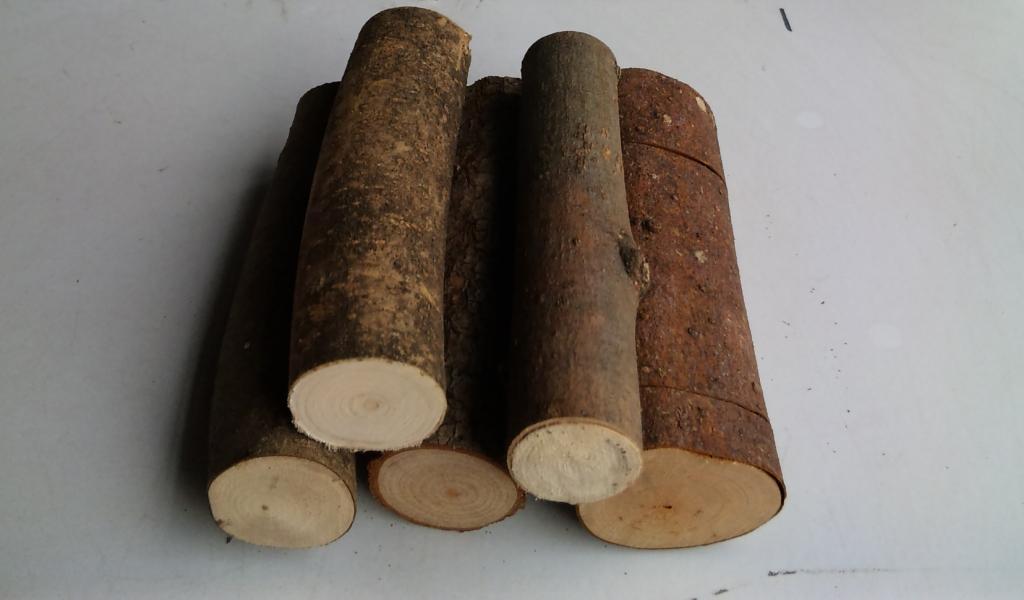 転倒防止材(止まり木) 直径20〜40ミリ(長さ約120ミリ)