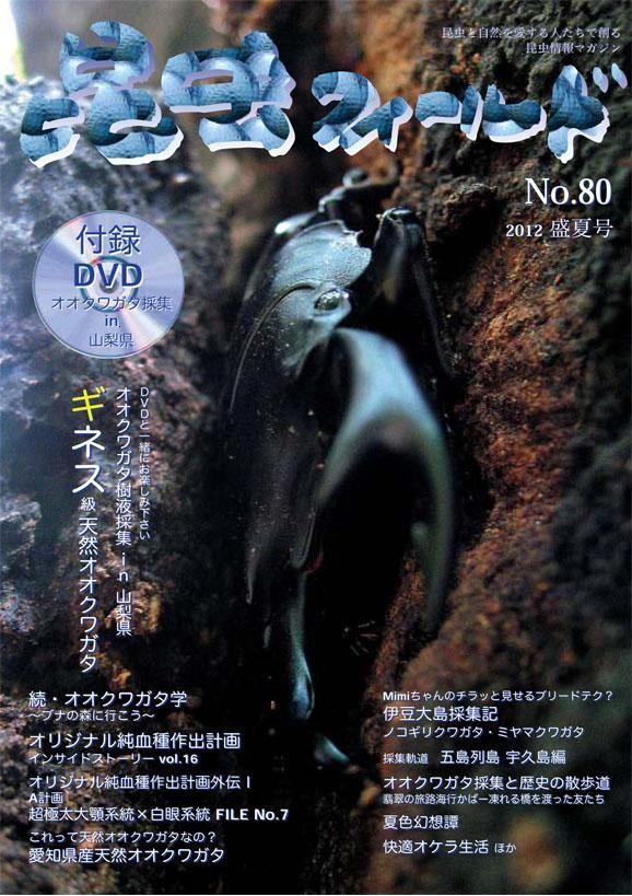 ☆販売中☆ 昆虫フィールド 80号(DVD付) 送料込み!!