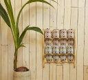 [カントリー雑貨][カントリー家具]スリッパラック壁掛け