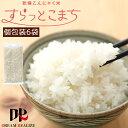 こんにゃく米 乾燥 メール便 送料無料 無農薬 おためしセット 60g x 6袋 糖質制限 糖