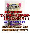 【まとめ買い】【送料無料】ピュアホワイト2000粒×5個セット 【とうもろこし種子】【スィートコーン種子】