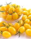 ミニトマト種子 野菜の種 イエローアイコ 小袋 (サカタのタネ) サカタ 種 【02P03Dec16】