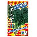 【ほうれん草種子】 【ナント種苗】 シューマッハ11(イレブン) M3万粒