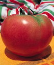 【大玉トマト種子】 サターン (タキイ種苗)小袋(50粒)【野菜の種】 【02P03Dec16】