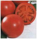 【トマト種子】 りんか409  (サカタのタネ) 100粒 【02P03Dec16】