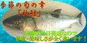 新物 「秋鮭」1本丸ごと 傷入有り品 大特価北海道産1027...