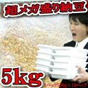とにかく沢山食べたい!そのご要望にお答え致します!5kgの納豆♪業務用としても最適♪ 【RCP】【1