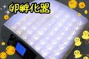 送料込み!最大56個 全自動孵卵器 孵卵機 ふ卵器 孵化器 インキュベーターy