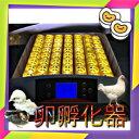 送料込み!最大56個 全自動孵卵器 孵卵機 ふ卵器 孵化器 インキュベーター y