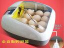 送料0円 孵卵器 ふ卵器 孵化器 PSE認証 インキュベーター全自動 新品
