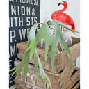 RoomClip商品情報 - 【いなざうるす屋 フェイクグリーン】コウモリランS 壁飾り 壁掛けインテリア 観葉植物 ウォールデコレーション 緑 壁掛け インテリア イミテーショングリーン 模様替え 癒し プレゼント 引越し 一人暮らし 祝い ギフト