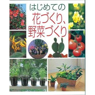 第一次養花,蔬菜容器種植蔬菜花卉基礎