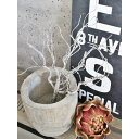 【いなざうるす屋 フェイクグリーン】ワシャワシャブランチ 壁飾り 壁掛けインテリア 観葉植物 ウォールデコレーション 緑 壁掛け インテリア イミテーショングリーン 模様替え 癒し プレゼント 引越し 一人暮らし お祝い おしゃれ 可愛い
