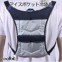 【冷却ベスト 熱中症対策 作業着】coolbit アイスポケット冷袋2 つめたい 2ポケットタイプ【...