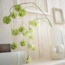 RoomClip商品情報 - 【いなざうるす屋 フェイクグリーン】ゆらゆらポンポン【グリーン/ホワイトグリーン】壁飾り 壁掛けインテリア 観葉植物 ウォールデコレーション 緑 壁掛け インテリア イミテーショングリーン 模様替え 癒し プレゼント 引越し 一人暮らし お祝い おしゃれ 可愛い