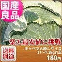 【特別栽培】 キャベツ A級良品 Lサイズ(1〜1.3kg)1玉■減農薬減化学肥料栽培