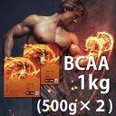 送料無料 BCAA 1kg(500g×2) 国産 無添加 無加工 筋トレ トレーニング ボディメイク ダイエット バルクアップ 野球 アメフト ラグビー 筋肉 トレーニング 筋トレ 10