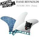店内ポイント最大20倍 CAPTAIN FIN キャプテンフィン Dane Reynolds デーン レイノルズ FUTURE TRI FIN S M L トライフィン ショートボード用 サーフィン フィン【あす楽対応】